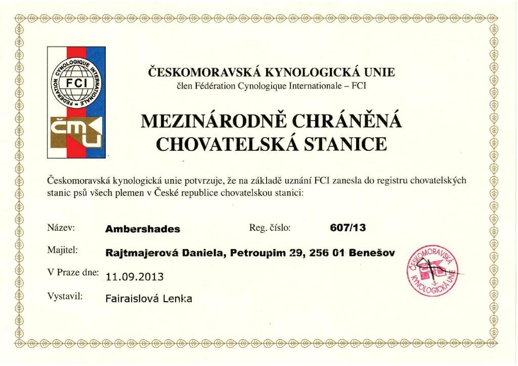 chs-certifikat